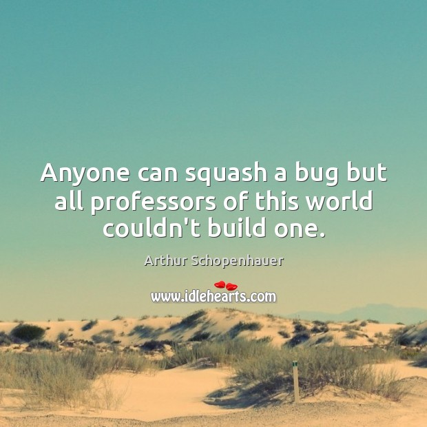 Anyone can squash a bug but all professors of this world couldn't build one. Arthur Schopenhauer Picture Quote