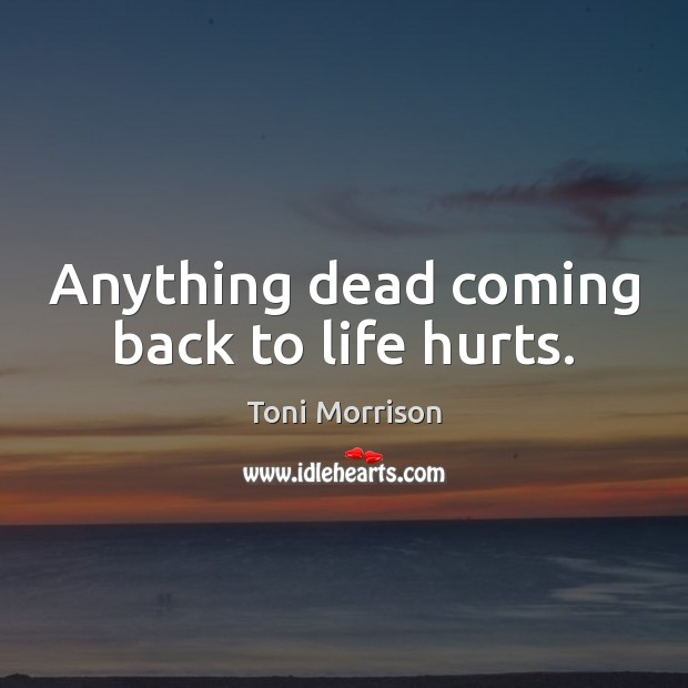 Anything dead coming back to life hurts. Toni Morrison Picture Quote