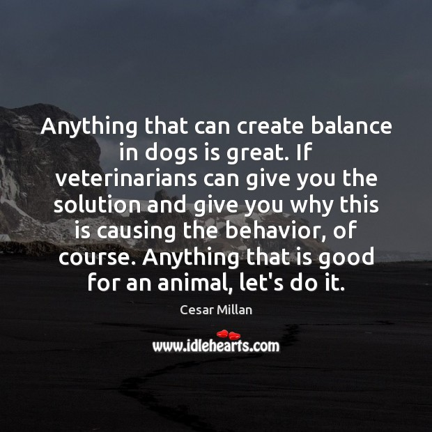 Anything that can create balance in dogs is great. If veterinarians can Behavior Quotes Image