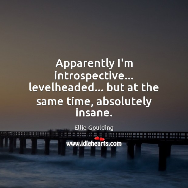 Apparently I'm introspective… levelheaded… but at the same time, absolutely insane. Ellie Goulding Picture Quote