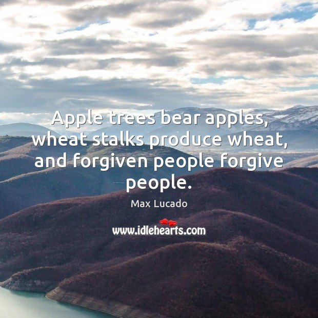 Image, Apple trees bear apples, wheat stalks produce wheat, and forgiven people forgive people.