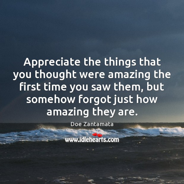 Appreciate the things that you thought were amazing the first time you saw them Doe Zantamata Picture Quote