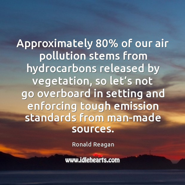 Image, Approximately 80% of our air pollution stems from hydrocarbons released by vegetation
