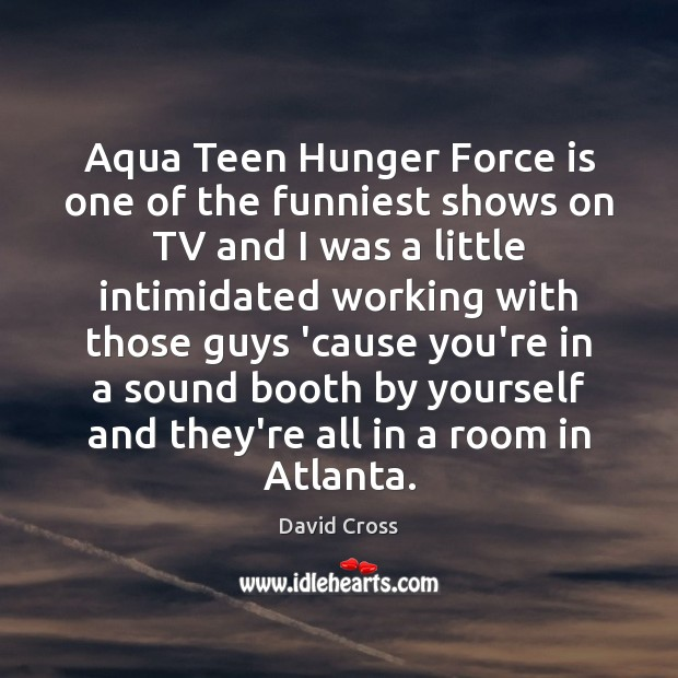 Image, Aqua Teen Hunger Force is one of the funniest shows on TV