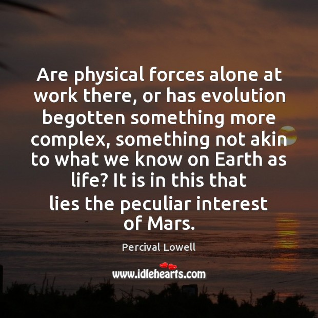Are physical forces alone at work there, or has evolution begotten something Image