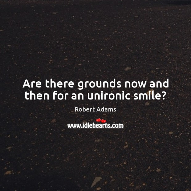 Are there grounds now and then for an unironic smile? Robert Adams Picture Quote