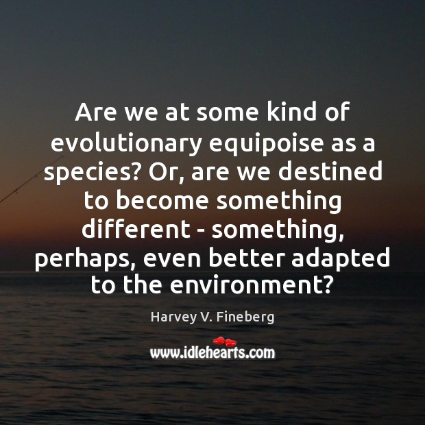 Image, Are we at some kind of evolutionary equipoise as a species? Or,
