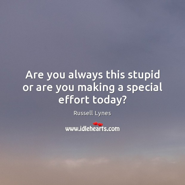 Image, Are you always this stupid or are you making a special effort today?