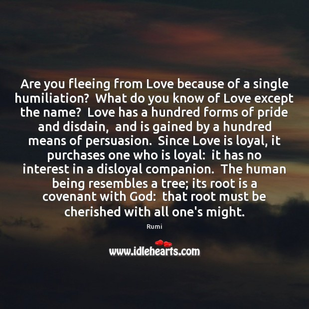 Are you fleeing from Love because of a single humiliation?  What do Image