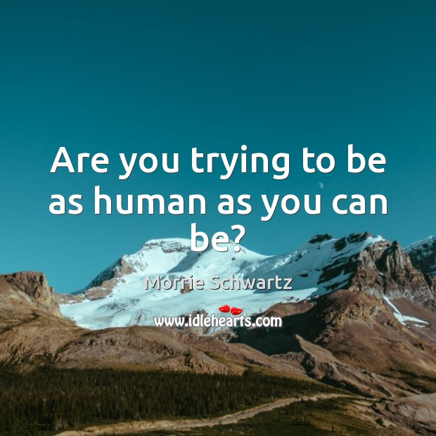 Are you trying to be as human as you can be? Image