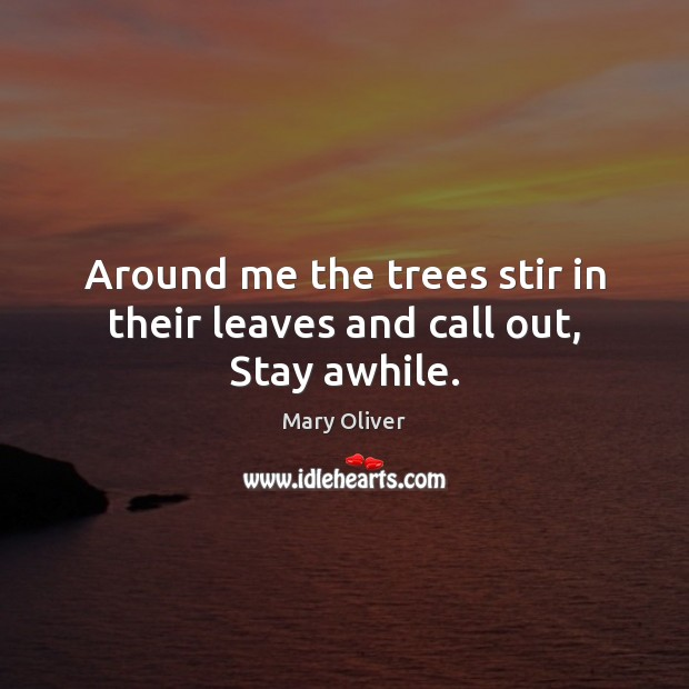 Around me the trees stir in their leaves and call out, Stay awhile. Mary Oliver Picture Quote