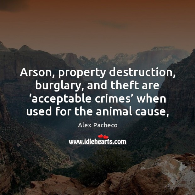 Image, Arson, property destruction, burglary, and theft are 'acceptable crimes' when used for