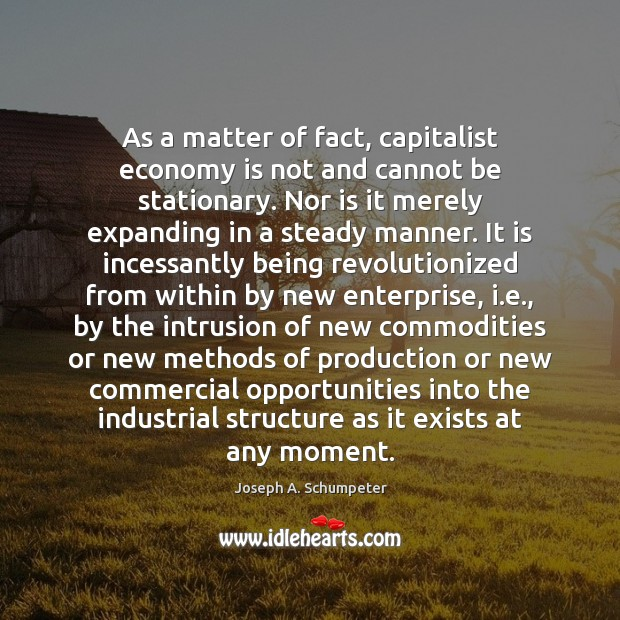 As a matter of fact, capitalist economy is not and cannot be Image