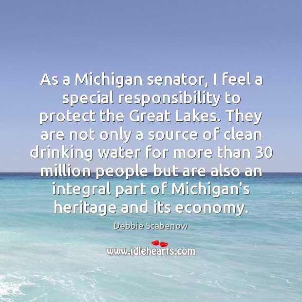 As a Michigan senator, I feel a special responsibility to protect the Image