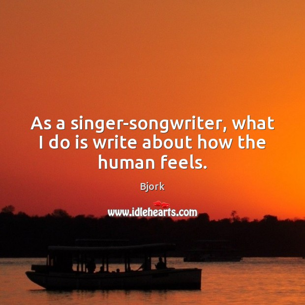 Image, As a singer-songwriter, what I do is write about how the human feels.