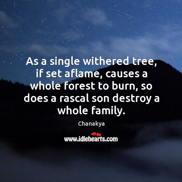 Image, As a single withered tree, if set aflame, causes a whole forest to burn