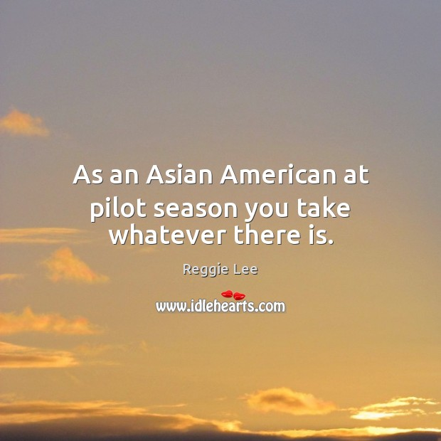 Image, As an Asian American at pilot season you take whatever there is.