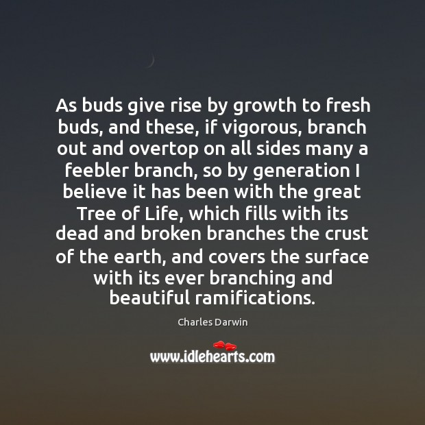 As buds give rise by growth to fresh buds, and these, if Image