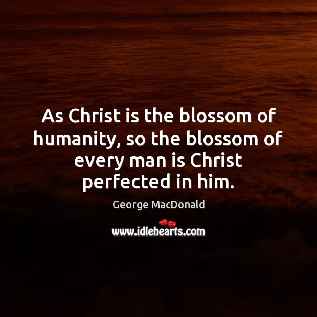 Image, As Christ is the blossom of humanity, so the blossom of every