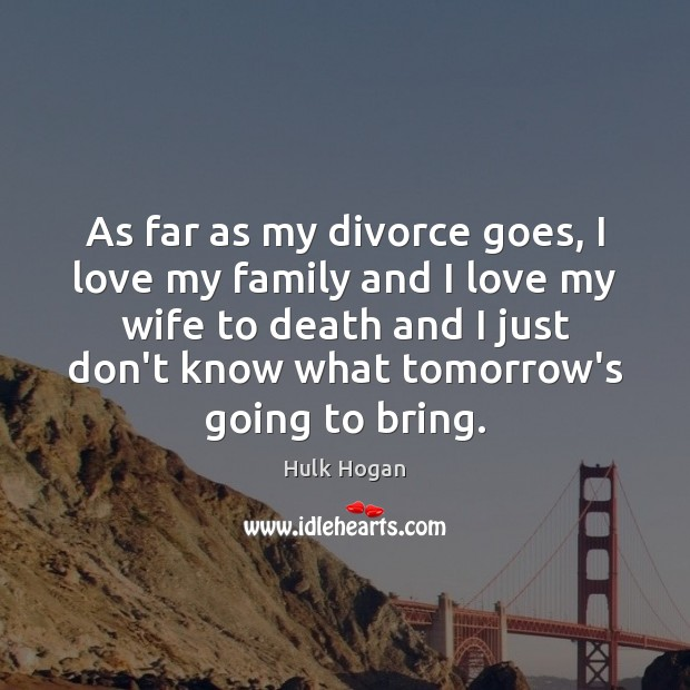 As far as my divorce goes, I love my family and I Divorce Quotes Image