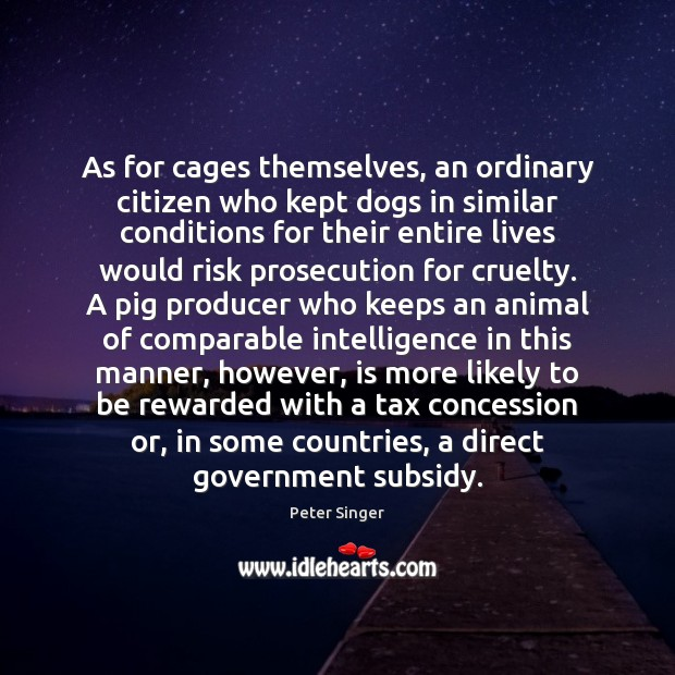 As for cages themselves, an ordinary citizen who kept dogs in similar Image