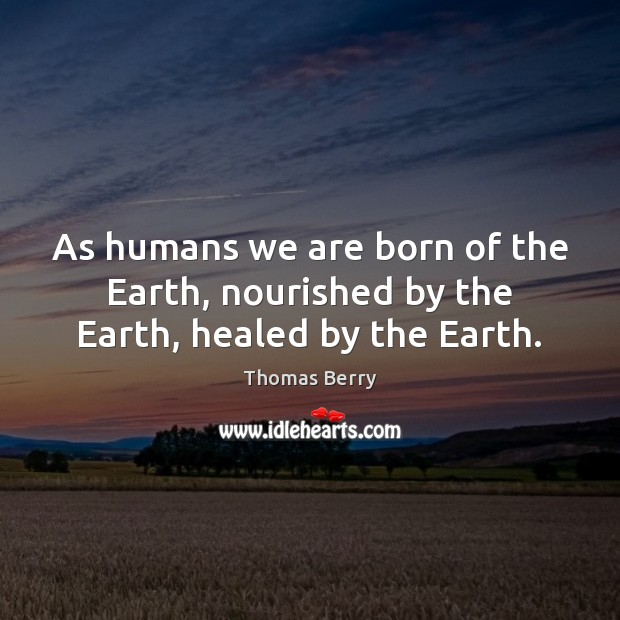 As humans we are born of the Earth, nourished by the Earth, healed by the Earth. Thomas Berry Picture Quote