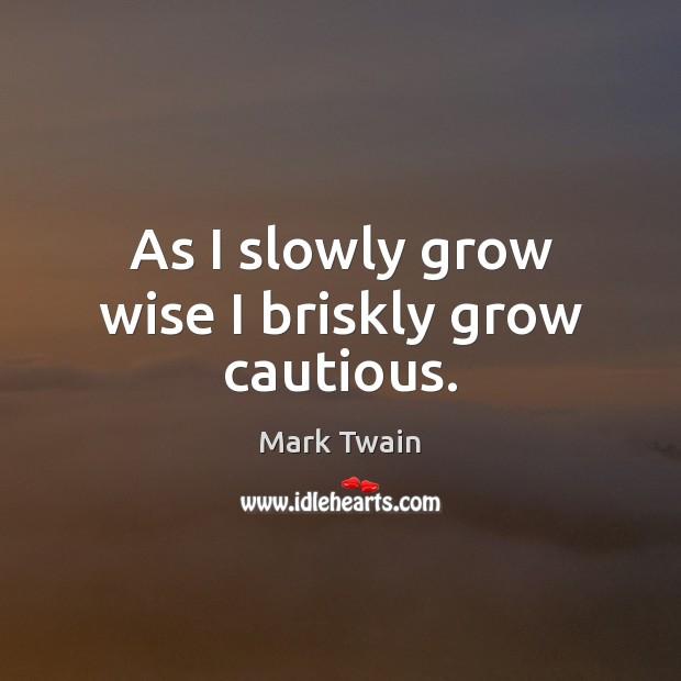 As I slowly grow wise I briskly grow cautious. Image