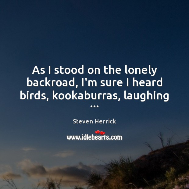 As I stood on the lonely backroad, I'm sure I heard birds, kookaburras, laughing … Lonely Quotes Image