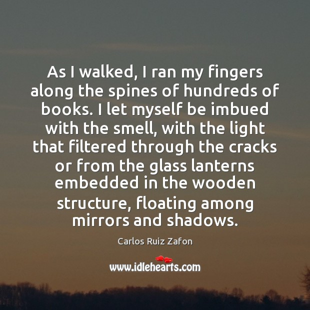 Image, As I walked, I ran my fingers along the spines of hundreds