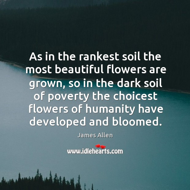 Image, As in the rankest soil the most beautiful flowers are grown