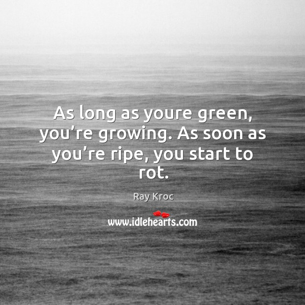 As long as youre green, you're growing. As soon as you're ripe, you start to rot. Ray Kroc Picture Quote