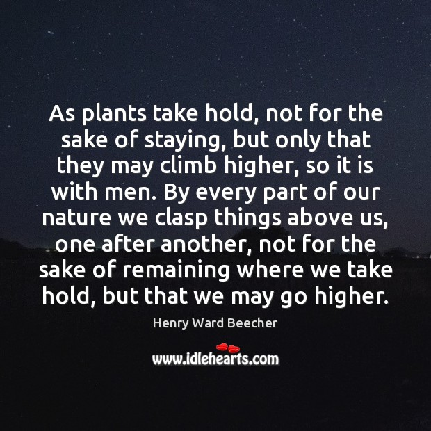 Image, As plants take hold, not for the sake of staying, but only