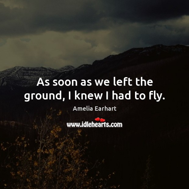 Image, As soon as we left the ground, I knew I had to fly.