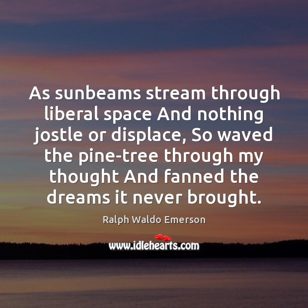 As sunbeams stream through liberal space And nothing jostle or displace, So Image