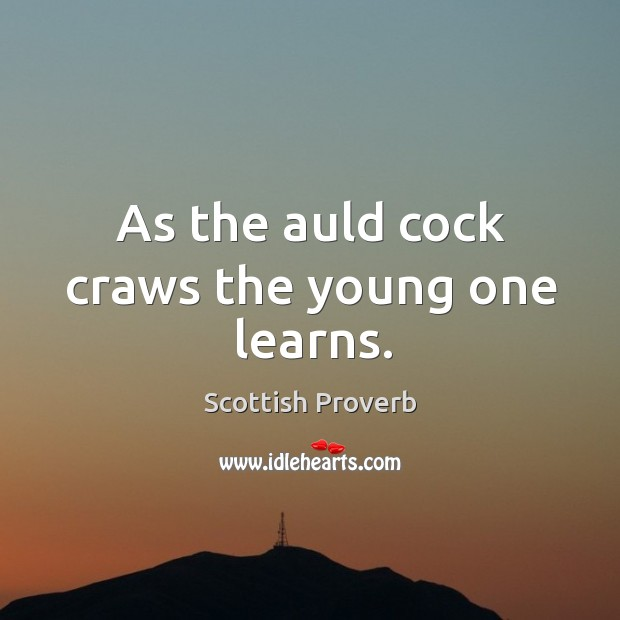 Image, As the auld cock craws the young one learns.