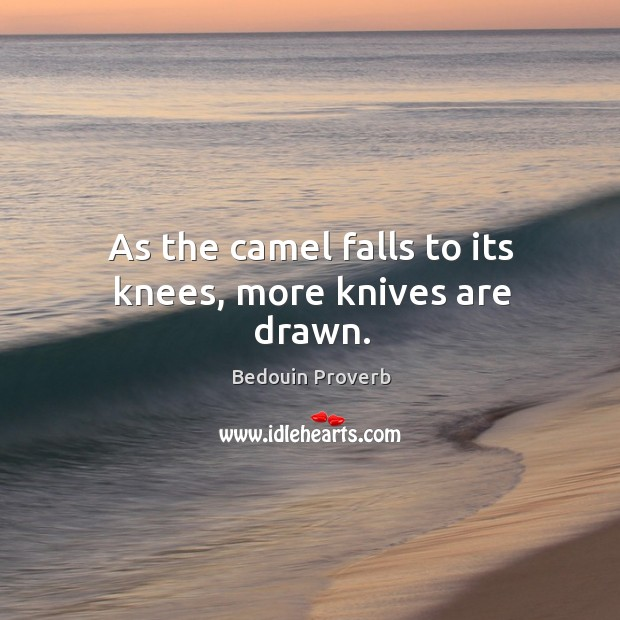 Image, As the camel falls to its knees, more knives are drawn.