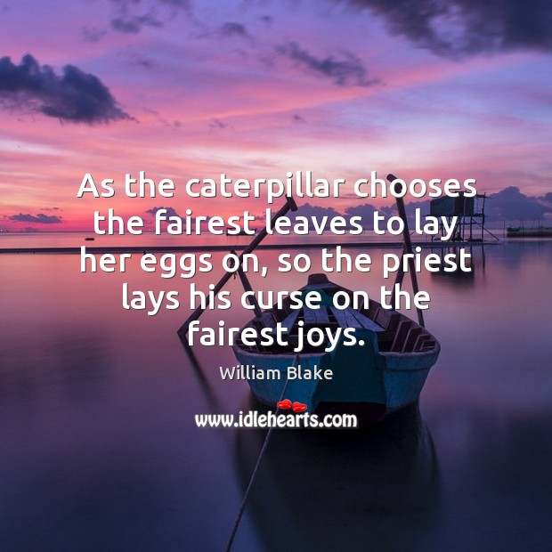As the caterpillar chooses the fairest leaves to lay her eggs on, William Blake Picture Quote