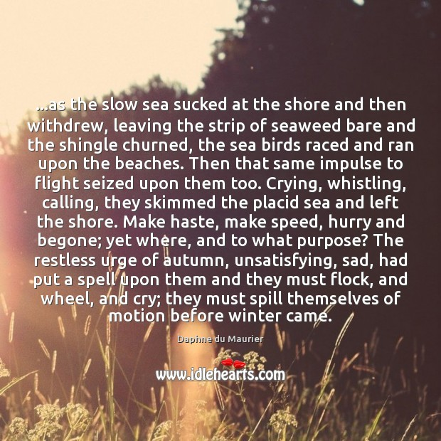 …as the slow sea sucked at the shore and then withdrew, leaving Daphne du Maurier Picture Quote