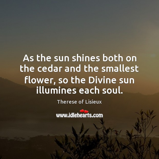 As the sun shines both on the cedar and the smallest flower, Therese of Lisieux Picture Quote