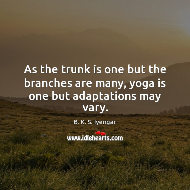As the trunk is one but the branches are many, yoga is one but adaptations may vary. B. K. S. Iyengar Picture Quote