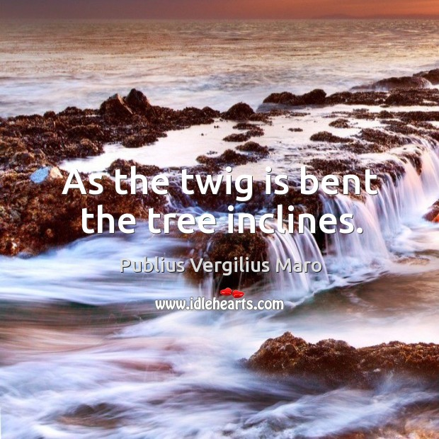 As the twig is bent the tree inclines. Image