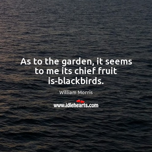 As to the garden, it seems to me its chief fruit is-blackbirds. William Morris Picture Quote