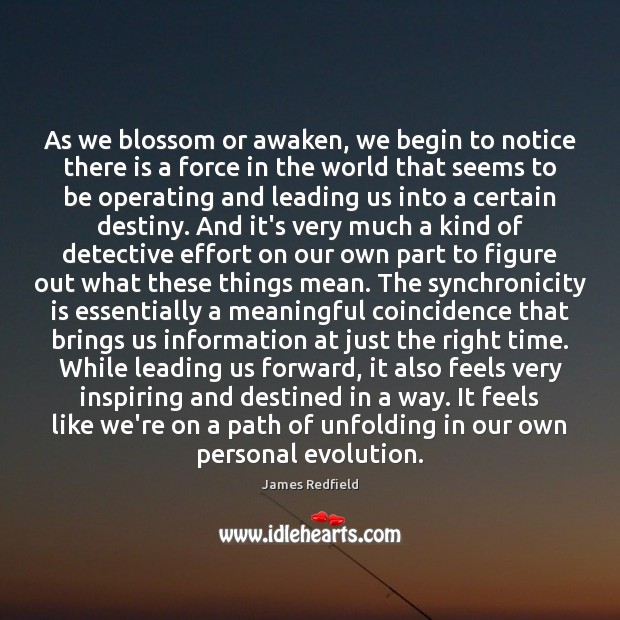 As we blossom or awaken, we begin to notice there is a James Redfield Picture Quote