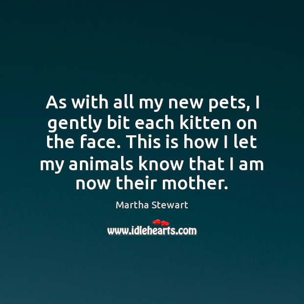 As with all my new pets, I gently bit each kitten on Martha Stewart Picture Quote