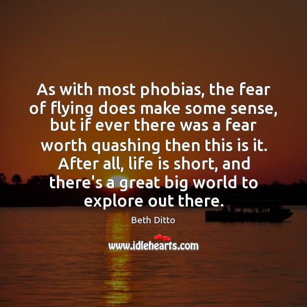 As with most phobias, the fear of flying does make some sense, Beth Ditto Picture Quote