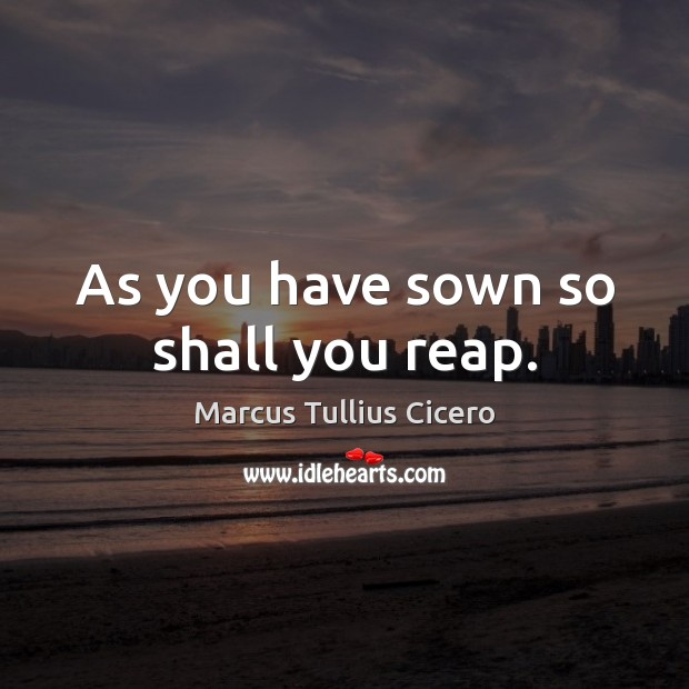 Image, As you have sown so shall you reap.