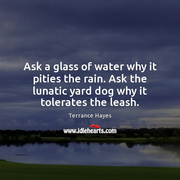Image, Ask a glass of water why it pities the rain. Ask the