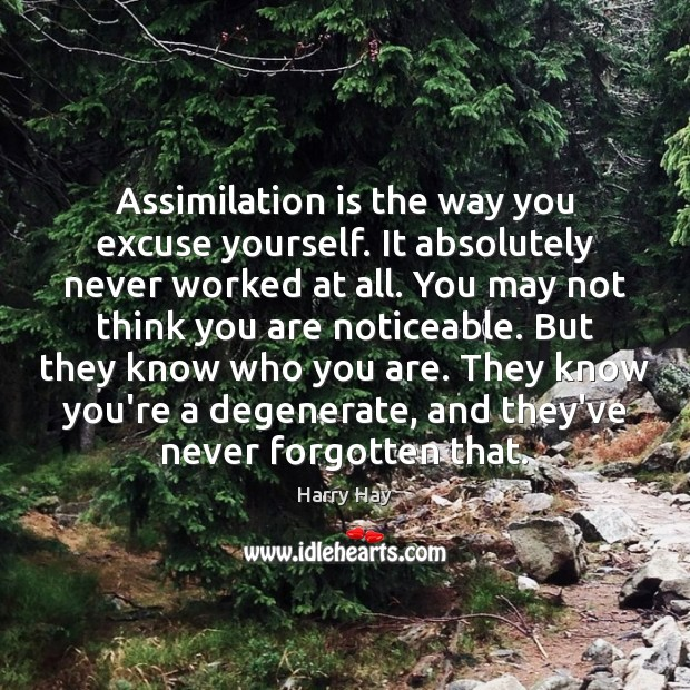 Image, Assimilation is the way you excuse yourself. It absolutely never worked at
