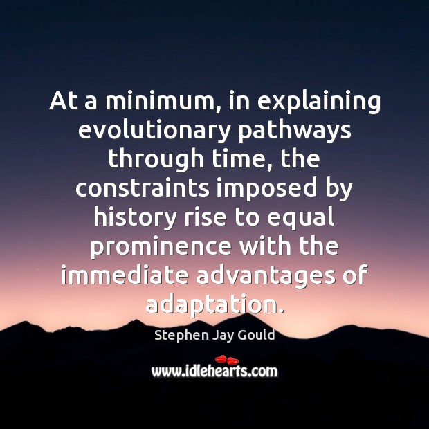 At a minimum, in explaining evolutionary pathways through time, the constraints imposed Stephen Jay Gould Picture Quote