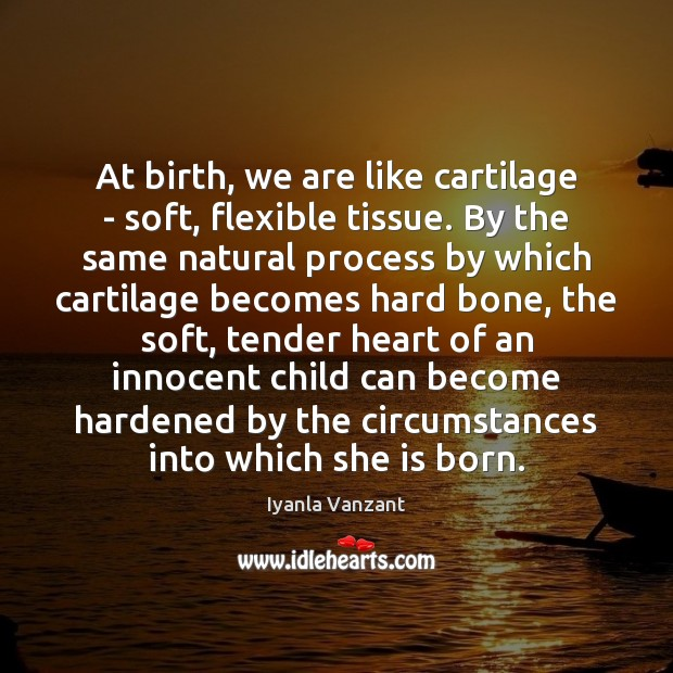 At birth, we are like cartilage – soft, flexible tissue. By the Iyanla Vanzant Picture Quote